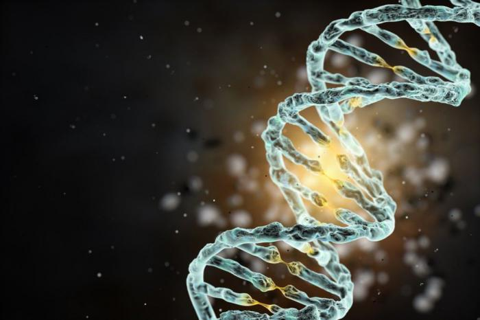 Технология редактирования генов избавила подростка от симптомов серповидноклеточной анемии