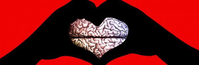 Наука изучила любовь с новой точки зрения!