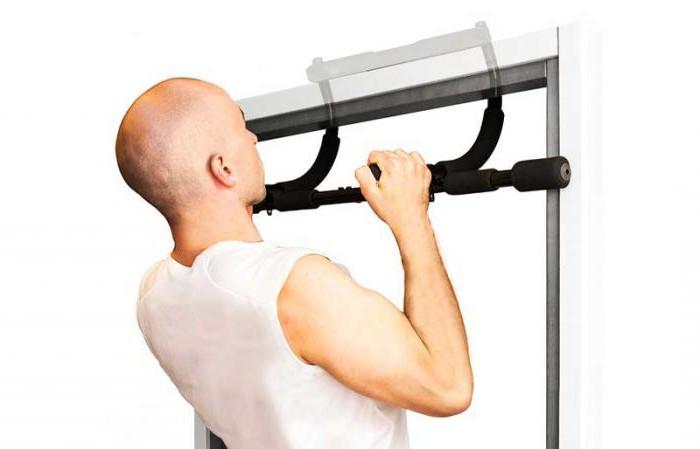Лучшие тренажеры для спины, позвоночника: обзор, виды, особенности выбора и отзывы