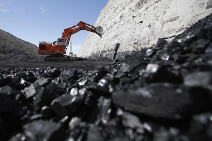 Образование каменного угля (биология): особенности, свойства и виды