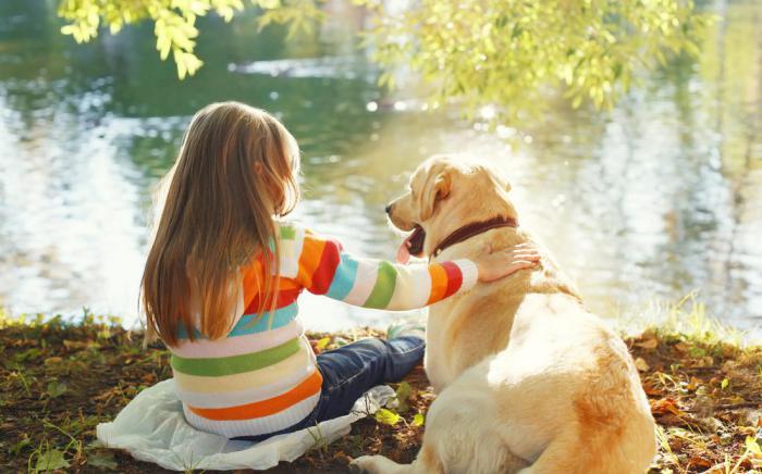 Почему дети предпочитают дружить с домашними животными, а не с братьями или сестрами?