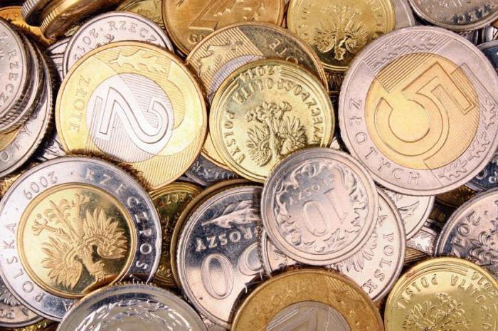 Какая денежная единица Польши: евро или злотый?