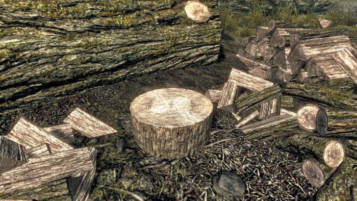 Значение пословицы «Лес рубят - щепки летят». Интересные факты