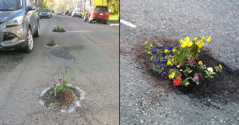 Вы должны увидеть, что жители города сделали с выбоинами на дорогах!