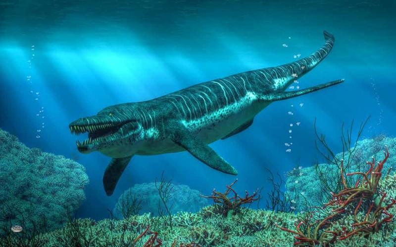 15самых гигантских животных, когда-либо населявших нашу планету