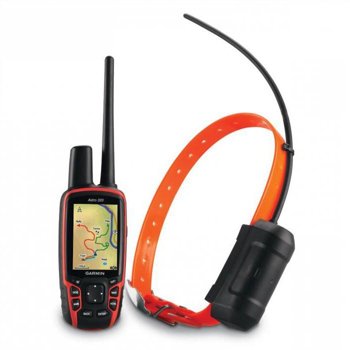 GPS-трекер для собак: обзор, устройство, модели и отзывы
