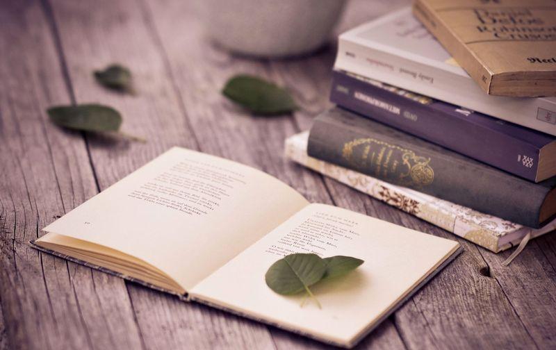 Рэй Брэдбери обисцеляющей силе литературы