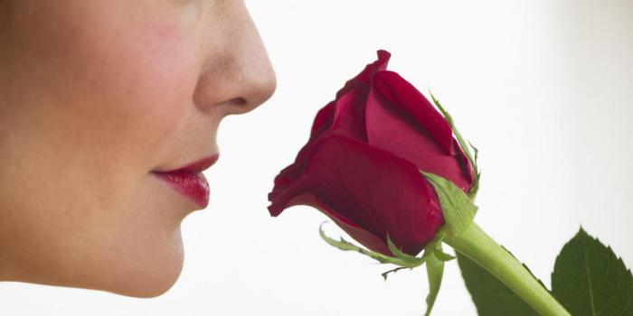 Наш мозг запоминает незнакомцев по запаху?