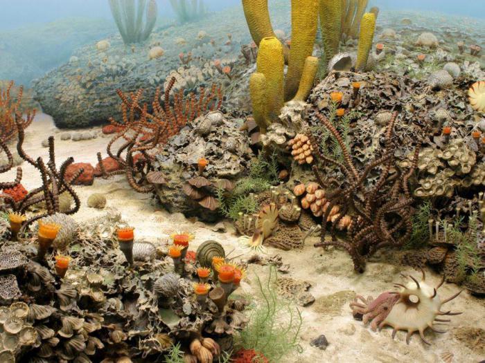 Ученые удивлены тем, что произошло после Великого пермского вымирания
