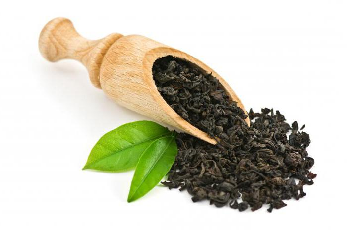 Байховый чай: сорта, польза, калорийность