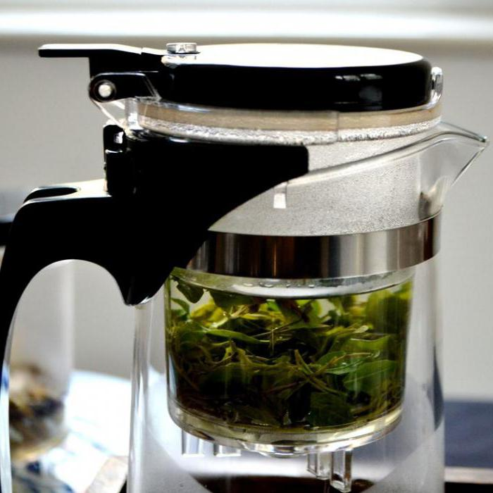 Заварник для чая: какому отдать предпочтение?