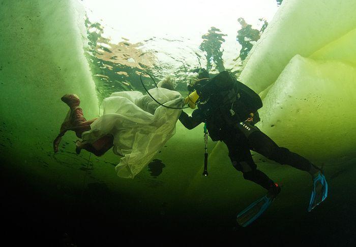 Смотрите, как голая женщина-ученый пытается приручить белух подо льдами Арктики