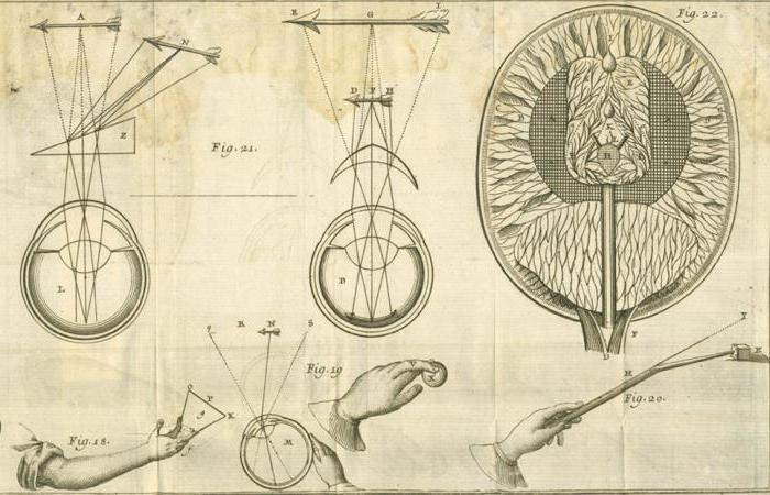 Французский философ, математик, механик и физик Рене Декарт: биография, труды, учение