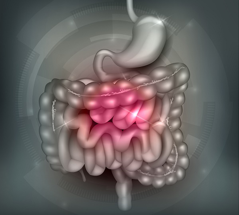 Су-джок-терапия: лечебные точки при несварении желудка
