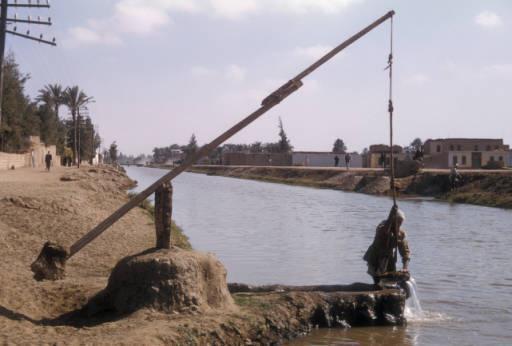 Что такое шадуф: история и современность