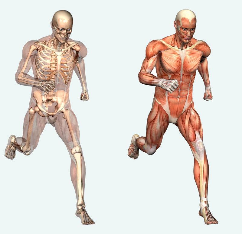Осознавание через движение: 9 упражнений Фельденкрайза