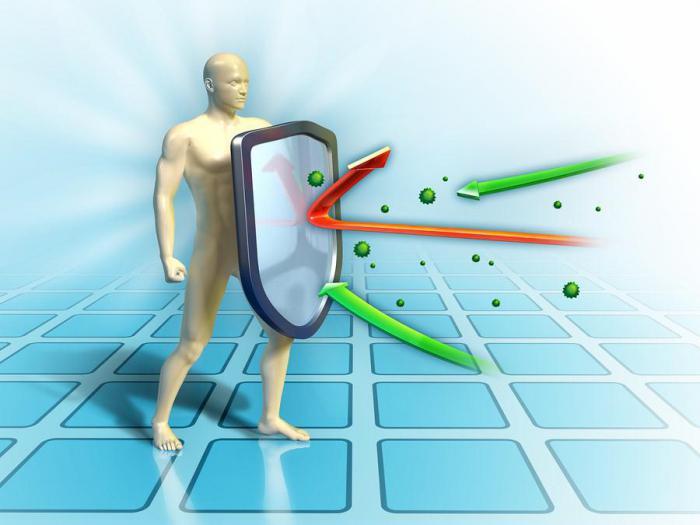 Почему 20 минут — магическое число для здоровья вашей иммунной системы?
