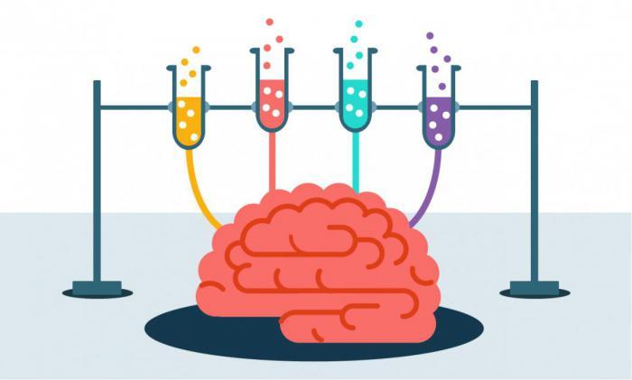 5 игр, которые тренируют мозг и держат его  в форме