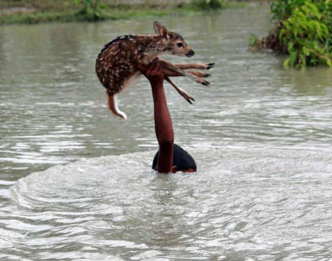 15 фотографий, которые доказывают, что мир – не такое плохое место