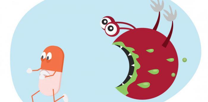 Кровь драконов способна победить устойчивость бактерий с антибиотикам?