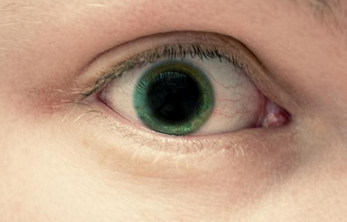 Глазные капли «Мидримакс»: инструкция по применению, аналоги, отзывы