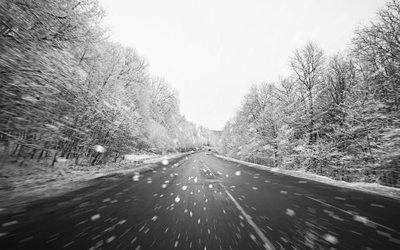 Закон о зимней резине в России