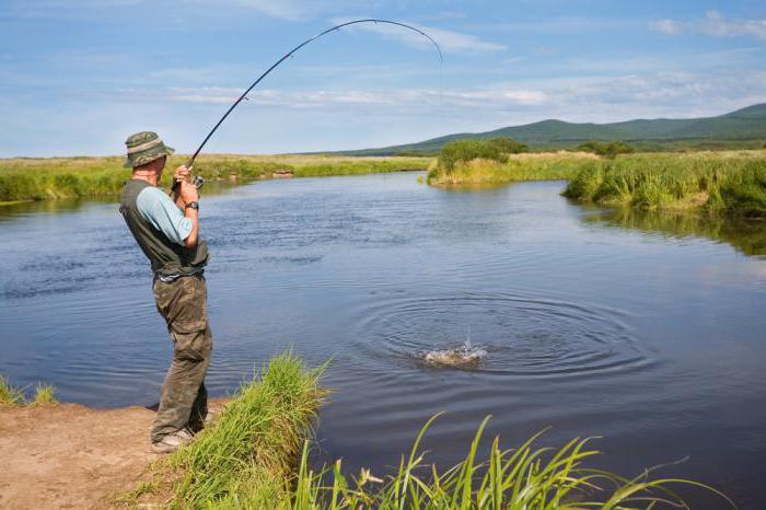 Как сделать поводок для рыбалки своими руками?