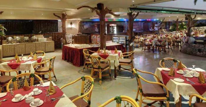 Отель Joecons Beach Resort 4* (Индия, Гоа): обзор, номера и отзывы туристов