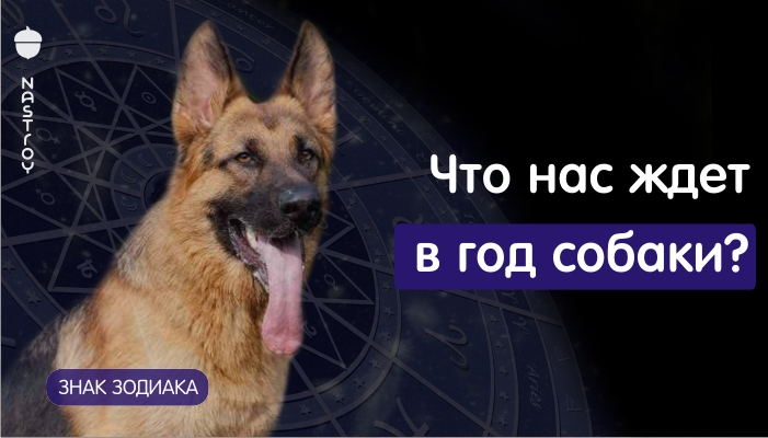 Гороскоп на 2018 год от Павла Глобы. Что нас ждет в год собаки?
