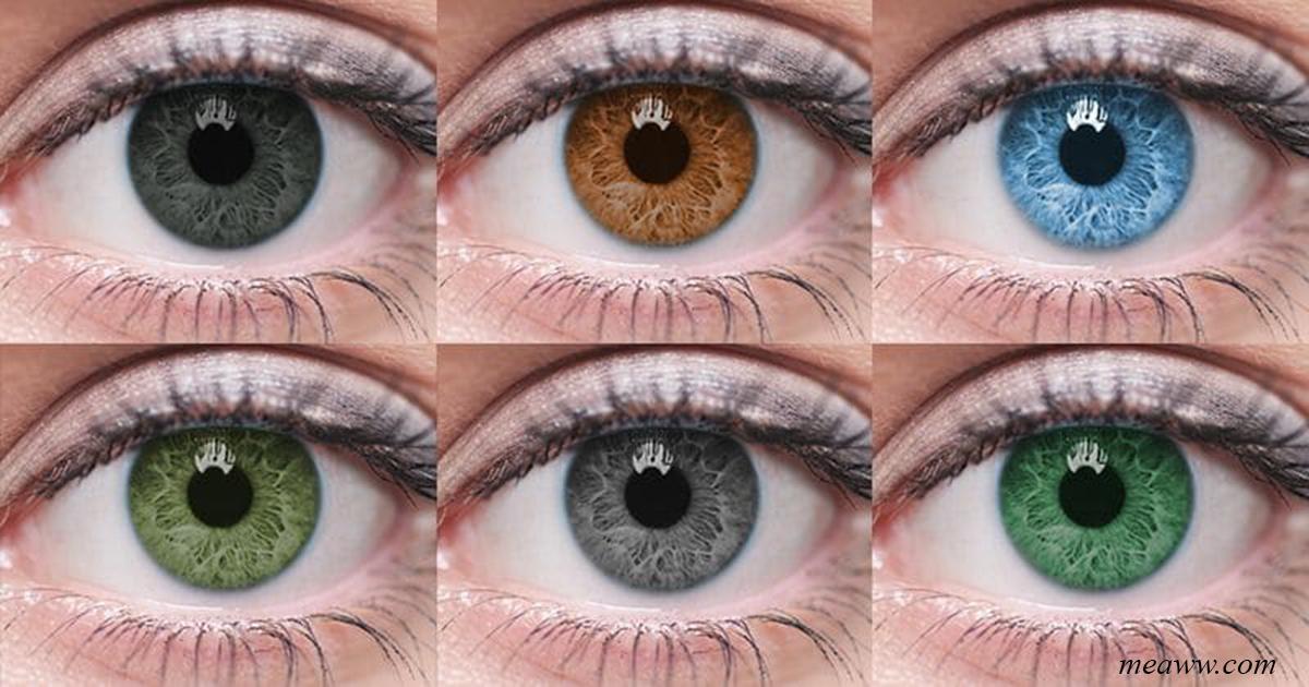 От цвета ваших глаз зависит, какой тип секс партнера вам нужен!
